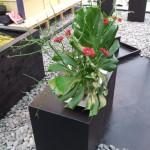 Floriade 2012 Arrangement 1