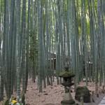 Hokokuji Tempel