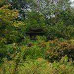 2016-06-11 II Japanischer Garten MK (40)