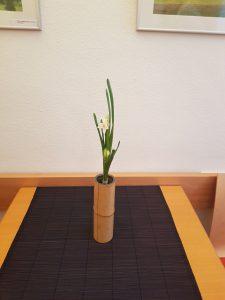 20180113 Yuko Watanabe-Kessler